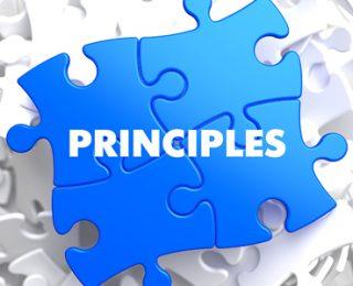 12-Step Principles